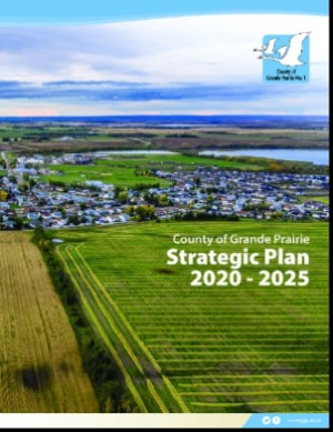 Cover of 2020-2025 Strategic Plan